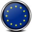 European Union Icon — Stock Vector