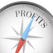 Compass profits — 图库矢量图片