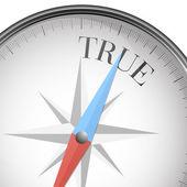 Compass true — Stock Vector