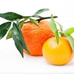 Mandarin. tangerines with leaves — Stock Photo