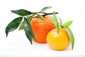 Mandarin. tangeriner med blad — Stockfoto
