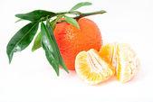 Mandarin. mandalina yaprakları ile — Stok fotoğraf