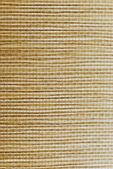 Natuurlijke muur-papier — Stockfoto
