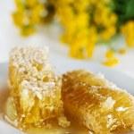 peignes de miel avec le miel et le jaune des fleurs — Photo
