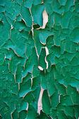 Green rust background — Stock Photo
