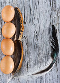Eggs and feather on the old wood — Stock Photo