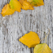 Autumn leaves on old wood background — Stock Photo #12679601