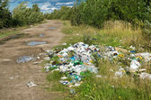 Garbage dump on the nature — Stock Photo