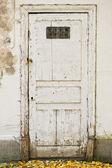 Old door — Photo