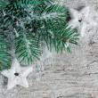 Christmas background with fir branch — Stock Photo
