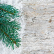 Christmas background with fir branch - Stock Photo