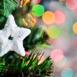 Cristmas star shape on fir tree — Stock Photo