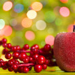 Christmas decoration on the bokeh background — Stock Photo