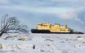 Cargo ship on the ice sea — Stock Photo