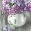 Lilac flowers bouquet — Stock Photo