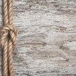 Ship rope, shells and wood background — Stock Photo