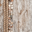 Rope, sea shells and wood background — Stock Photo