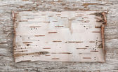 Birch bark on the old wood — Stock Photo