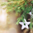 Christmas decoration on the fir branch — Stock Photo