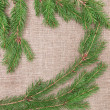 Christmas decoration with fir branches on burlap — Stock Photo