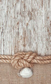 Aged paper with ship rope and seashell — Stock Photo