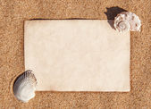 Sheet of paper and seashells on the sand — Foto Stock