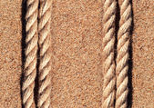 Sand background with rope — Stock Photo