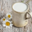 Fresh milk in ceramic mug — Stock Photo