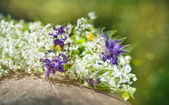 Beautiful flowers on the old wood — Stock Photo