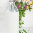 Fresh milk in old fashioned bottle and wildflowers — Stock Photo #49899379
