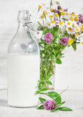 Fresh milk in old fashioned bottle and wildflowers — Стоковое фото