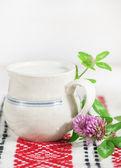 Fresh milk in ceramic mug — Stock Photo