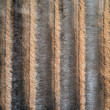 Sheep Fur Texture — Stock Photo