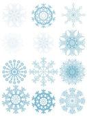 Set of twelve isolated snowflakes — Stock Vector