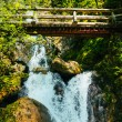 Wooden bridge over waterfalls in the mountains - Foto de Stock