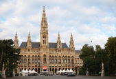 Rathaus (City hall) in Vienna, Austria in the morning — Stok fotoğraf
