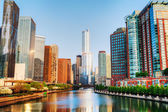 Chicago downtown with Trump International Hotel and Tower in Chi — Stock Photo