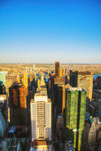 New York City cityscape with the Central Park — Stock Photo