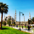 SultAhmed Mosque (Blue Mosque) in Istanbul — Stock Photo #31417739