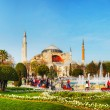 Hagia Sophia in Istanbul, Turkey in the morning — Stock Photo