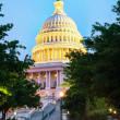 United States Capitol building in Washington, DC — Stock Photo #33722971