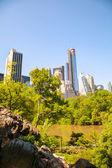 Panorama new yorku za slunečného dne — Stock fotografie