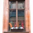 Stock Photo: Old window with flowerpot