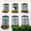 An old house with  windows with a flowerpots — Stock Photo