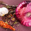 Various spices and herbs, onion and garlik — Stock Photo