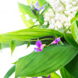 Bouquet of lilies of the valley on white background — Stock Photo