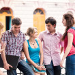 Group of happy smiling Teenage Students Outside College — Stock Photo #25587625