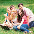 Group of happy smiling Teenage Students Outside College — Stock Photo #25833135