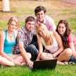 Group of happy smiling Teenage Students — Stock Photo #27004375