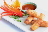 Veg spring rolls — Stock Photo